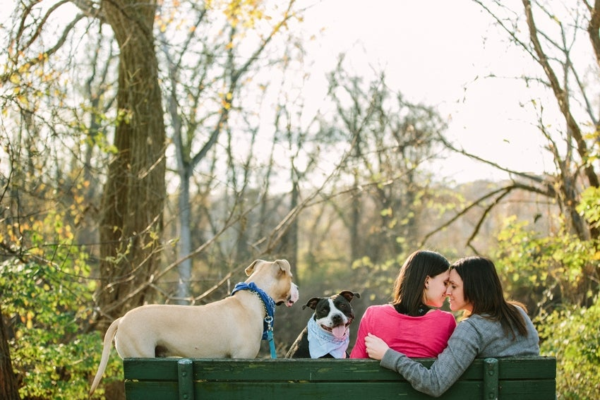 How-To: Include Pets In Wedding and Engagement Portraits