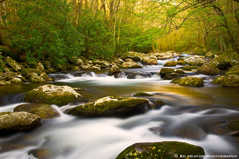 Little River in the Great Smoky Mountains National Park.jpg