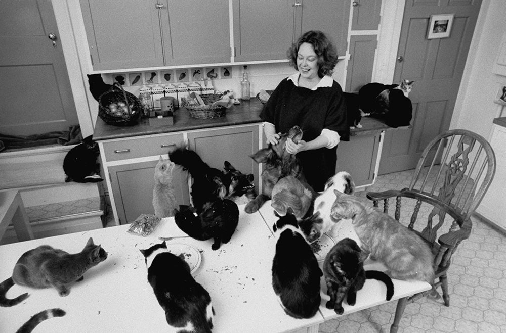 Sandy Dennis with cats in the kitchen