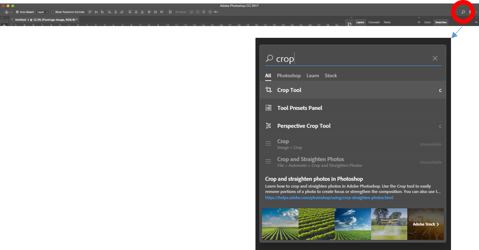 Photoshop in-app search