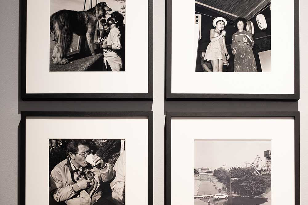 four black and white photographs on the wall