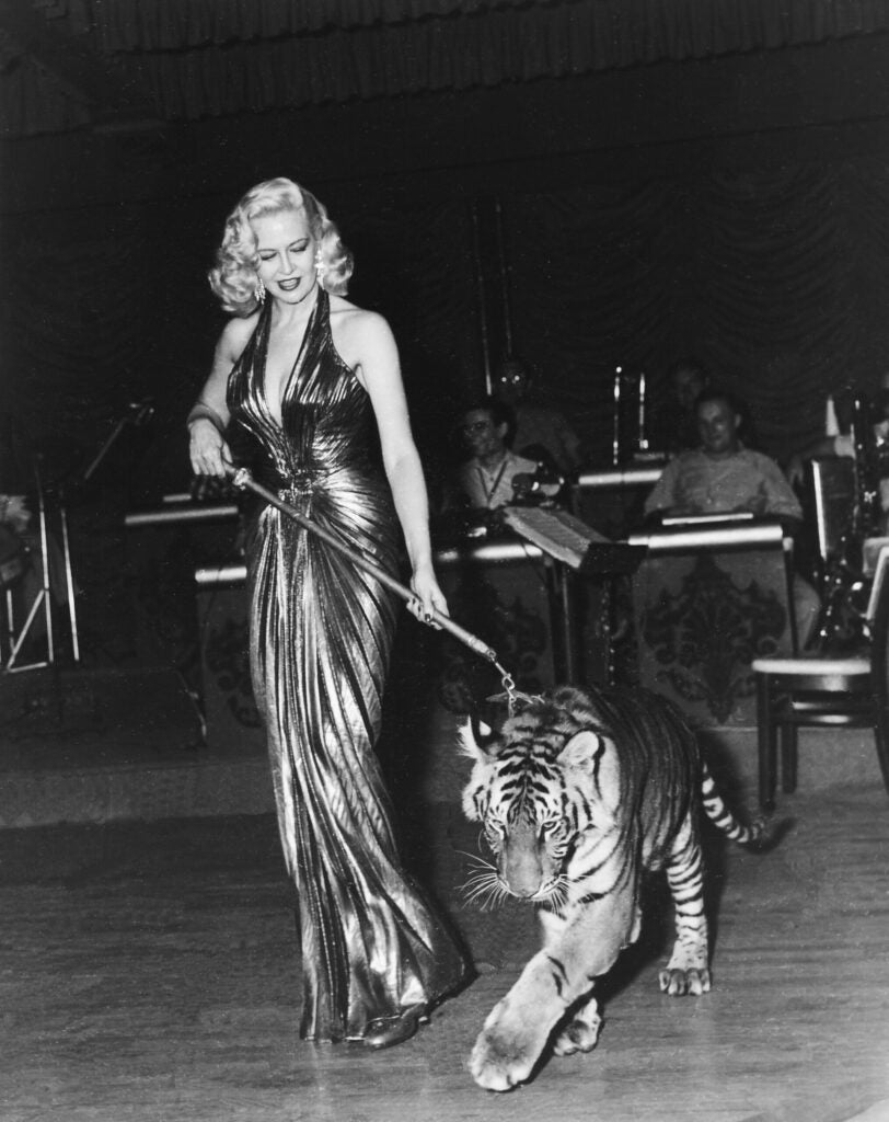 httpswww.popphoto.comsitespopphoto.comfilesimages201507009_the_ever-stunning_marilyn_maxwell_performing_on_stage_with_britches_the_tiger_at_the_last_frontier_aug._1_1954.jpg