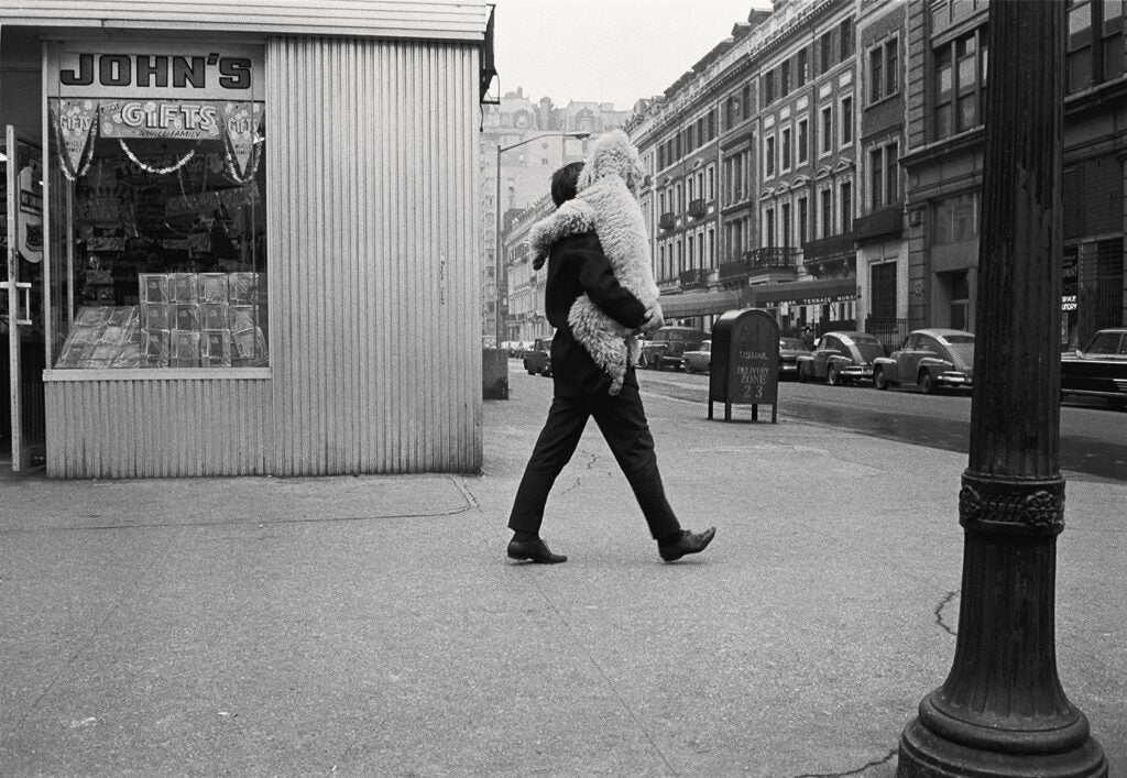 Man carrying dog in New York City