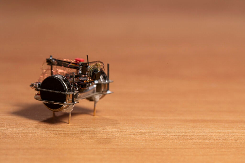An insect-sized robot built to carry the wee camera around.